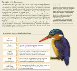 atlasofbirds bird taxonomy
