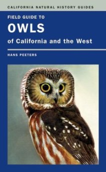 burrowing owl cover